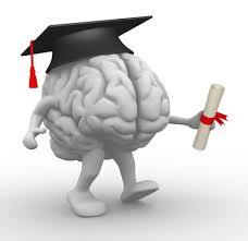 Diploma Degrees